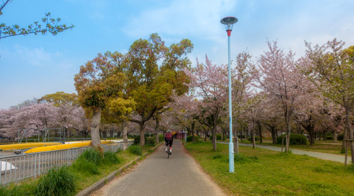 Cycling Osaka to Kyoto - My Name is April